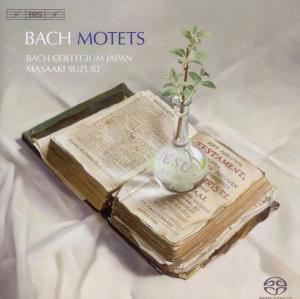 BACH, J.S. - MOTETS