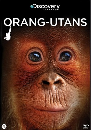 DOCUMENTARY - ORANGUTANS